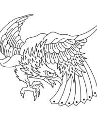 Ausmalbild Adler kostenlos 2