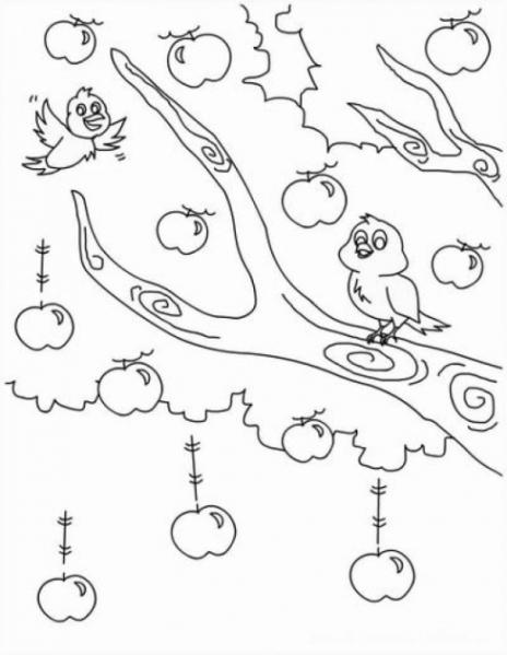 Malvorlagen Zum Drucken Ausmalbild Apfelbaum Kostenlos 1