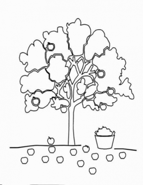 Malvorlagen Zum Drucken Ausmalbild Apfelbaum Kostenlos 2