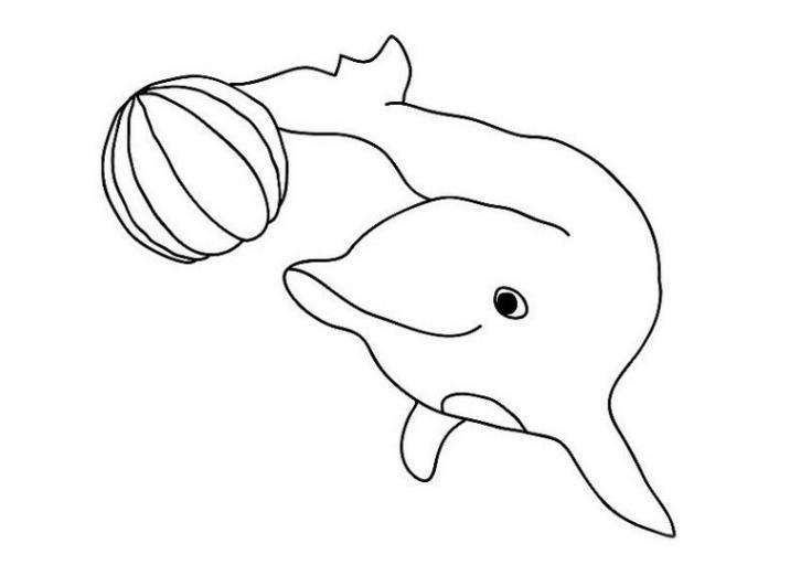 Ausmalbild Delphine kostenlos 2
