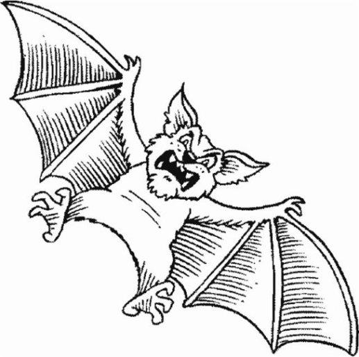 Malvorlagen zum Drucken Ausmalbild Fledermaus kostenlos 3