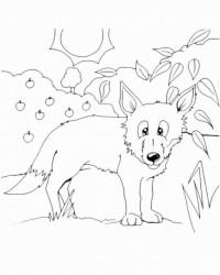 Ausmalbild Fuchs kostenlos 3