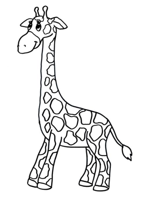 Ausmalbild Giraffe kostenlos 3