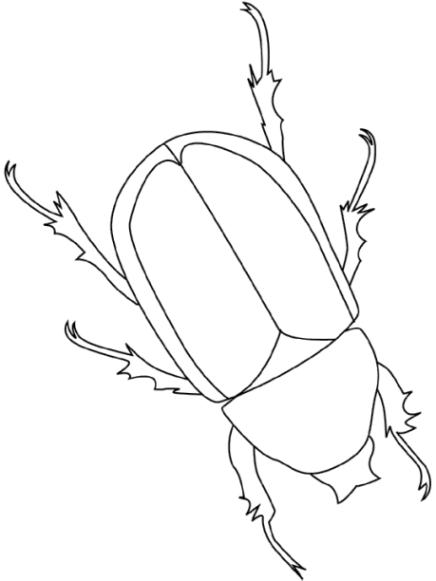 malvorlagen zum drucken ausmalbild käfer kostenlos 1