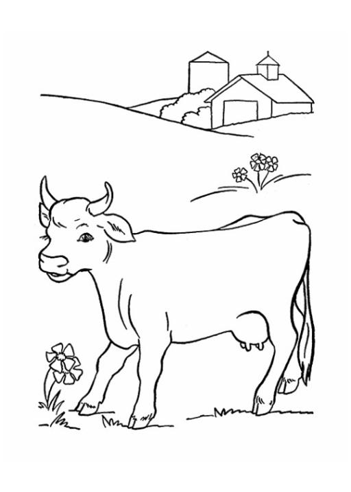 Ausmalbild Kuh kostenlos 2