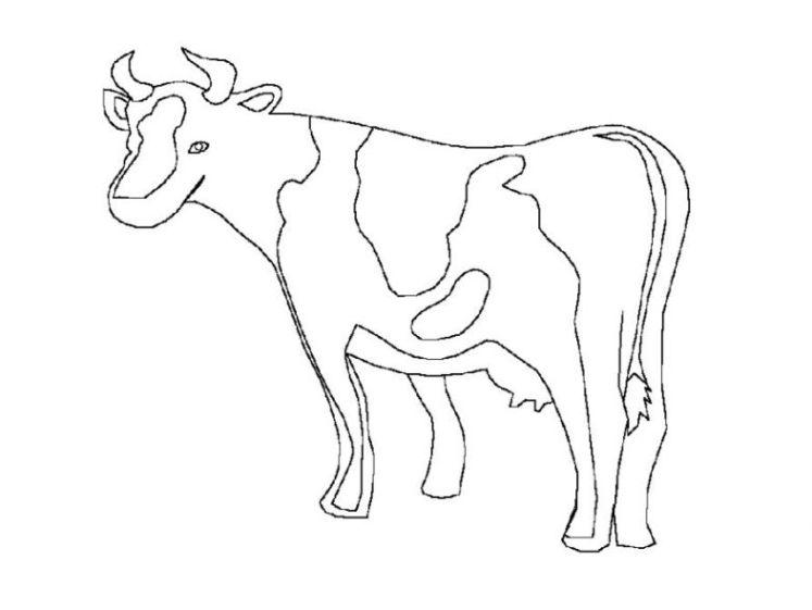 Malvorlagen Zum Drucken Ausmalbild Kuh Kostenlos 5