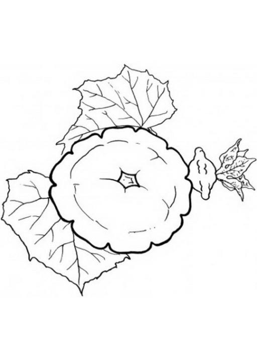 Malvorlagen Zum Drucken Ausmalbild Obst Und Gemüse Kostenlos 3