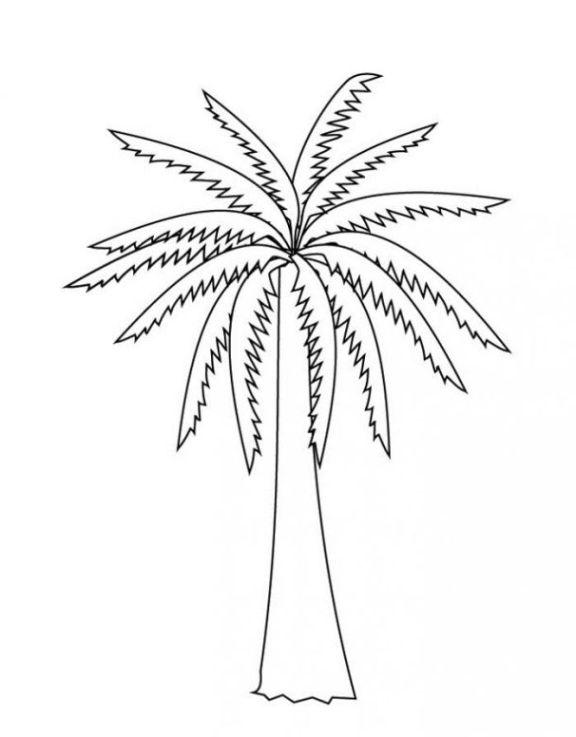 Malvorlagen zum Drucken Ausmalbild Palme kostenlos 3
