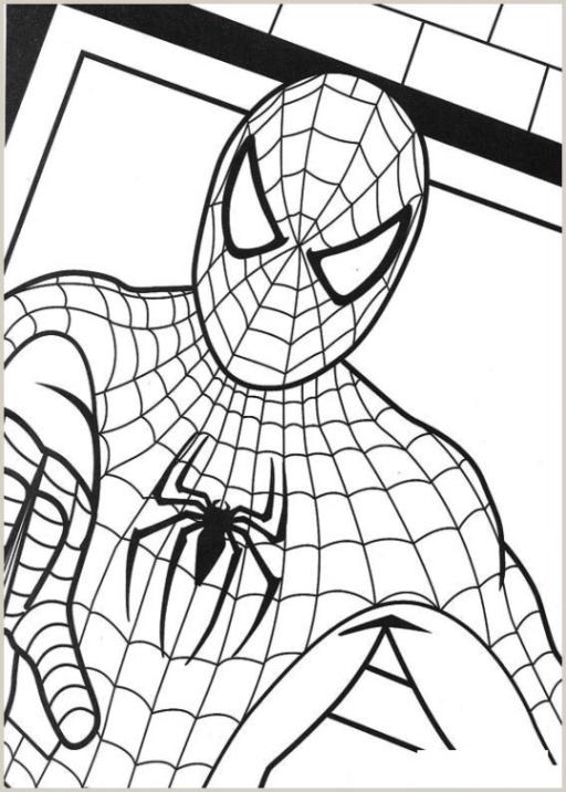 Malvorlagen Zum Drucken Ausmalbild Spider Man 2 Kostenlos 3