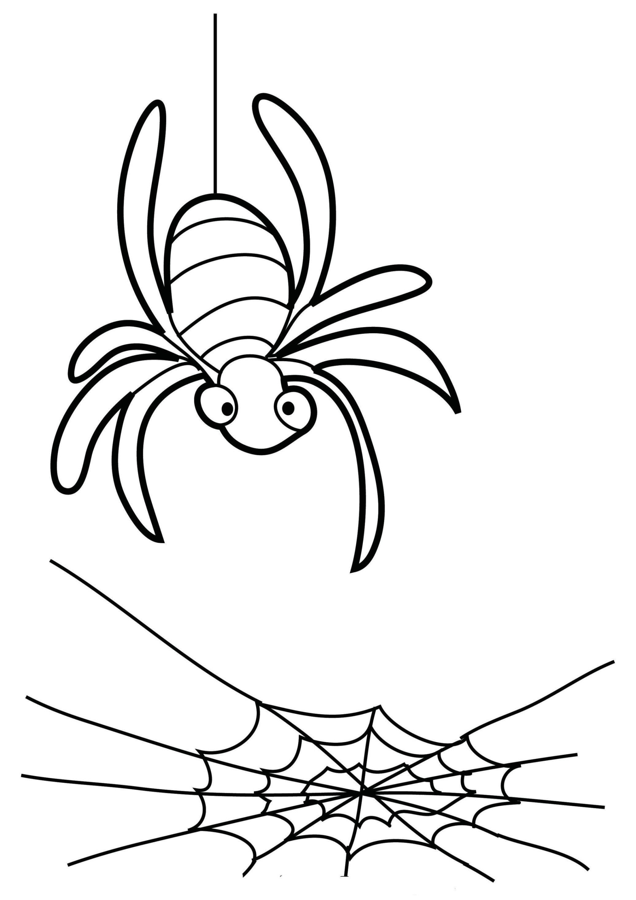 Mascaras Para Colorear likewise Spider Arthropod Animal Silhouette 717796 also Art Deco Clip Art Border furthermore File Spiders web together with Frog Eggs. on spider web