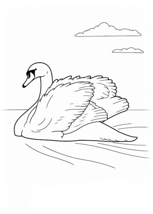 Ausmalbild Vögel kostenlos 3