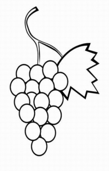 Malvorlagen zum Drucken Ausmalbild Weintraube kostenlos 1