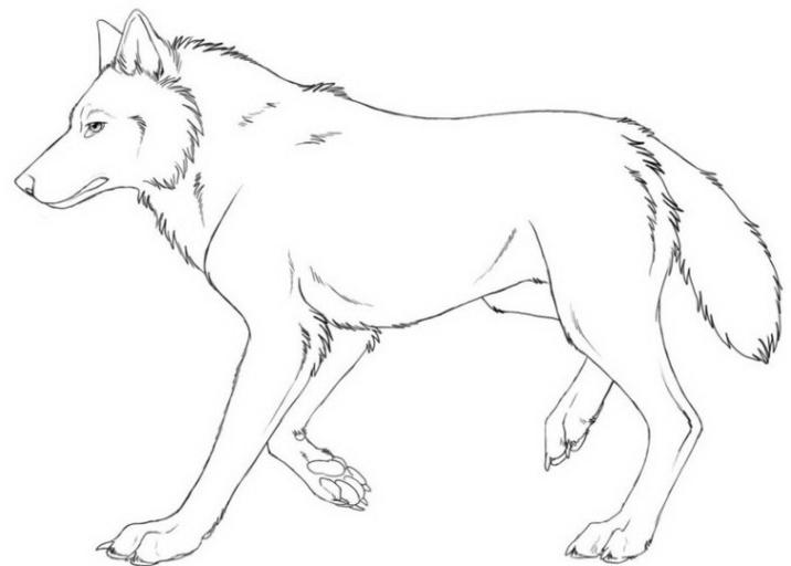 Malvorlagen Zum Drucken Ausmalbild Wolf Kostenlos 2