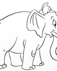 Ausmalbilder Von Elefant Kostenlos Zum Ausdrucken