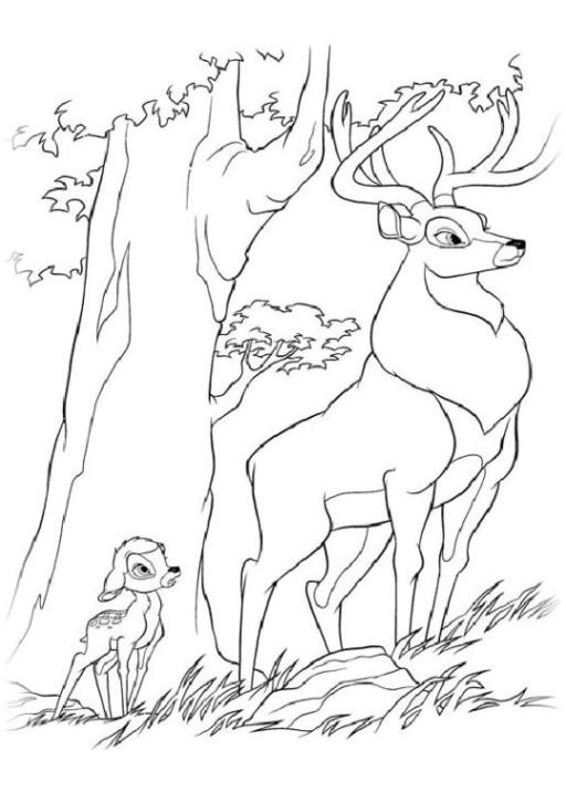 malvorlagen zum drucken ausmalbild bambi kostenlos 3