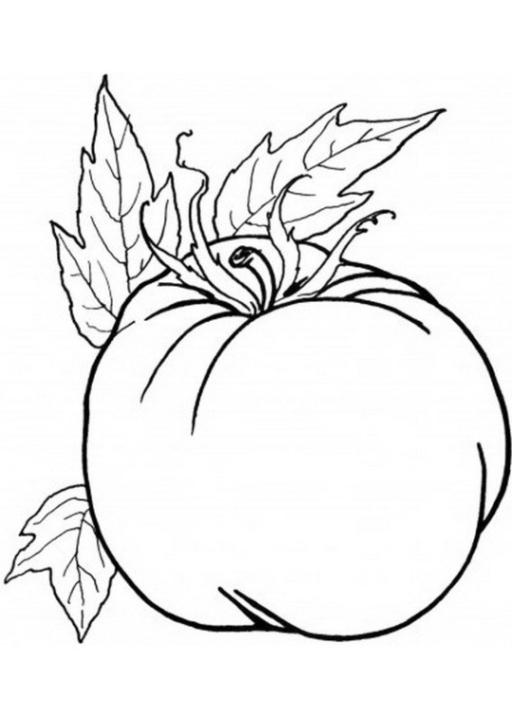 malvorlagen zum drucken ausmalbild obst und gemüse kostenlos 6