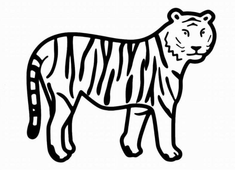 malvorlagen zum drucken ausmalbild tiger kostenlos 1